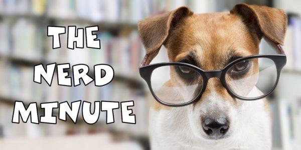 the-nerd-minute-800